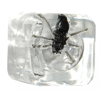 BAR BUG ICE CUBE